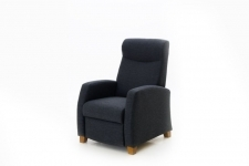 Lisbed Recliner